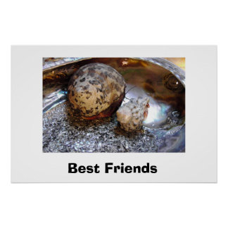 Best Friends Poster