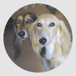 Best Friends- Saluki Dogs Stickers
