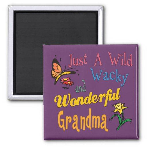 Best Grandma Gifts Fridge Magnets