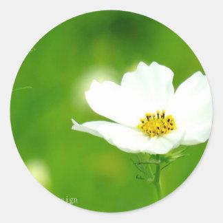 """""""Best photo art popular photographer top design """" Round Sticker"""