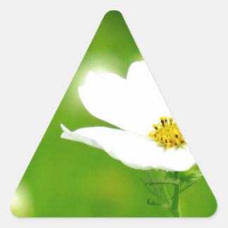 """Best photo art popular photographer top design "" Triangle Sticker"