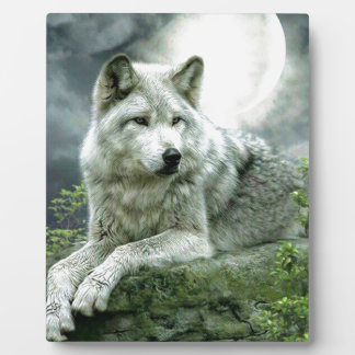 Best Selling Imaginative Wolf Art Illustration Pai Plaque