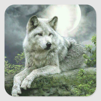 Best Selling Imaginative Wolf Art Illustration Pai Square Sticker