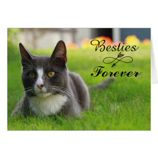 Besties Forever Greeting Card