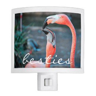 """Besties"" Quote Cute Orange Pink Flamingos Photo Nite Lights"