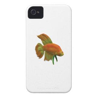 Betta Central iPhone 4 Case