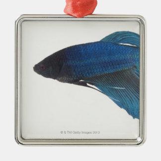 Betta Fish or Male Blue Siamese Fighting Fish Metal Ornament