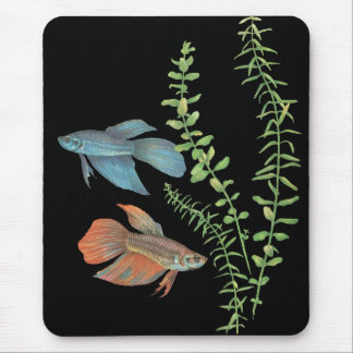 Betta splendens and Rotala indica Black Mouse Pad