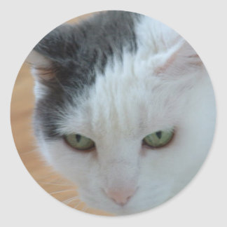 Bette Davis Eyes Round Sticker