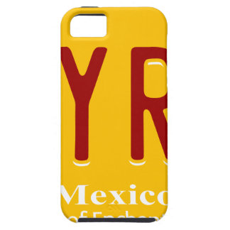 better-call-saul iPhone 5 cases