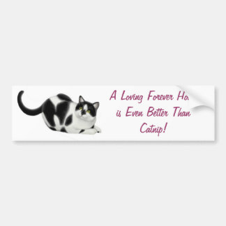 Better Than Catnip Bumper Sticker