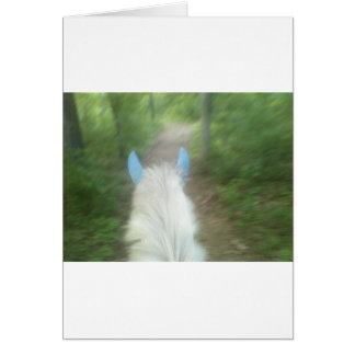 Between the ears. greeting cards