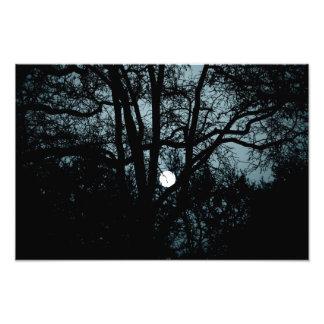 Between windows & moon photo print