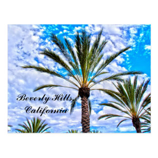Beverly Hills, California Postcard