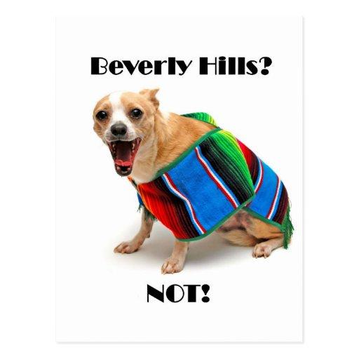 Beverly Hills? NOT! Postcards