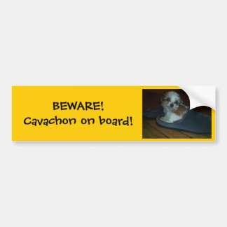 BEWARE! Cavachon on board! Bumper Sticker. Bumper Sticker