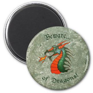 Beware Dragons Stone Green Magnet
