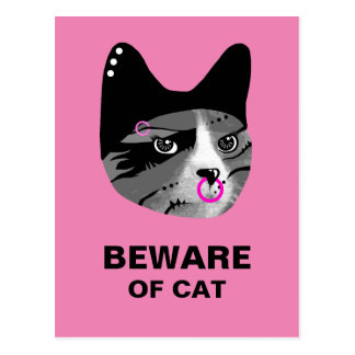 Beware of Cat Postcard