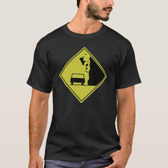 Beware of Falling Cows T-Shirt