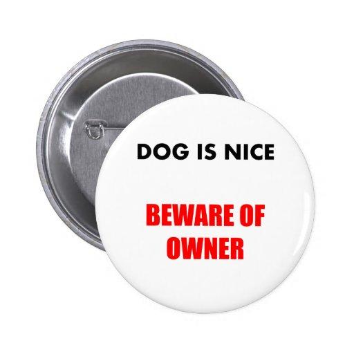 Beware of Owner Pins
