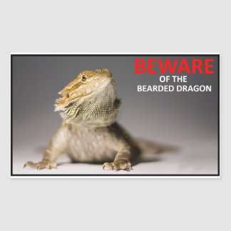 BEWARE of the bearded dragon Sticker