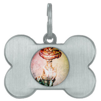 BEWARE THE CHESIRE GRIN PET TAGS