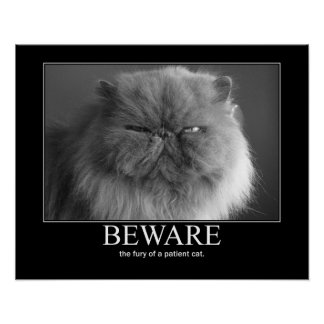 Beware the Fury of a Patient Cat Artwork Poster