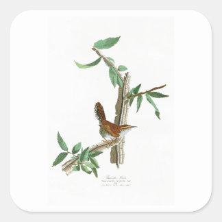 Bewick's Wren John James Audubon Birds of America Square Sticker
