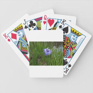 Bewildered Poker Deck