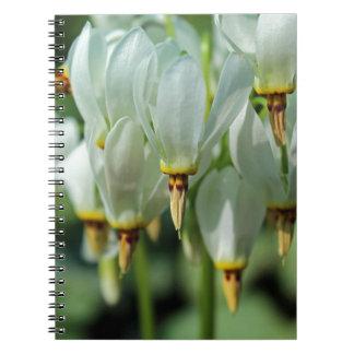 Beyond Imagination Spiral Notebooks