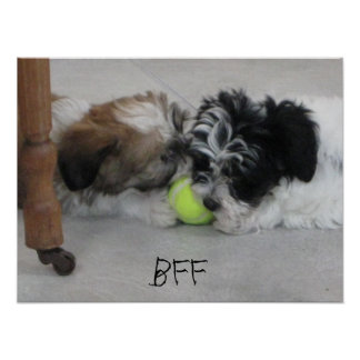 BFF Best Friends Puppy Poster