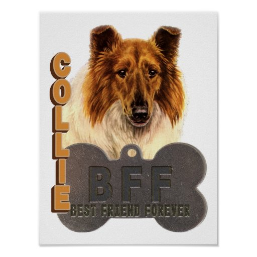 BFF COLLIE (Best Friend Forever) POSTER