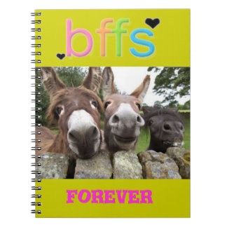 BFF'S Smiling Donkeys Notebook