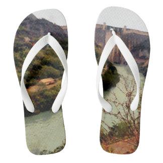 Bhakra Nangal Dam Flip Flops