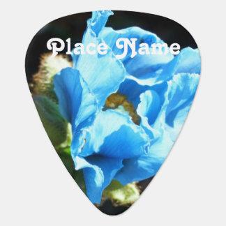 Bhutan Blue Poppy Pick