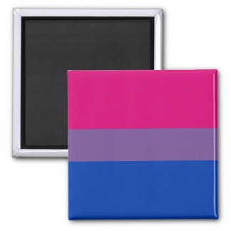 Bi Pride Flag Magnets