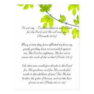 Bible passage, green leaves postcard