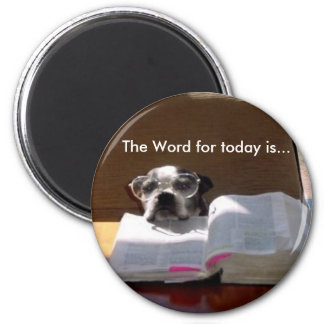 Bible Reading Boston Terrier Magnet