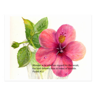 "Bible verse with a flower ""Hibiscus"" Postcard"