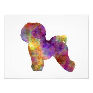 Bichon Anti-yaw in watercolor Photo Print