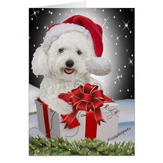 Bichon Christmas Cards