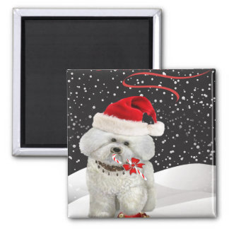 Bichon Enjoying Christmas Magnets