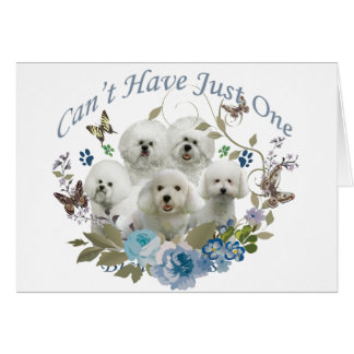 BICHON FRISE CAN'T HAVE JUST ONE CARD
