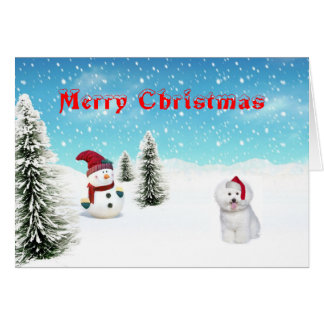 Bichon Frise christmas card