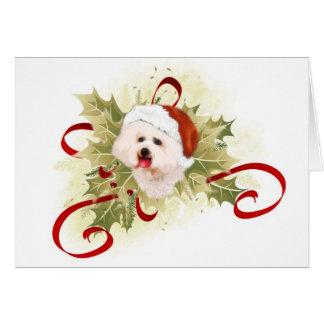 Bichon Frise Christmas Cards