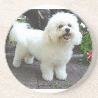 Bichon Frisé Dog Beverage Coaster