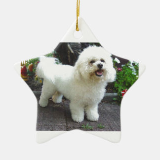 Bichon Frisé Dog Ceramic Star Ornament