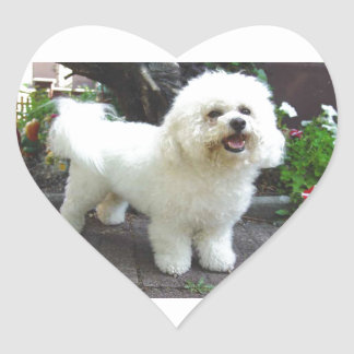 Bichon Frisé Dog Heart Sticker