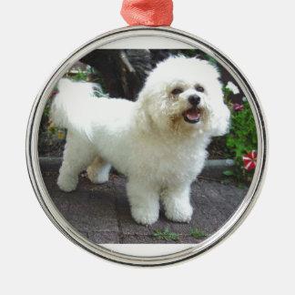 Bichon Frisé Dog Silver-Colored Round Ornament