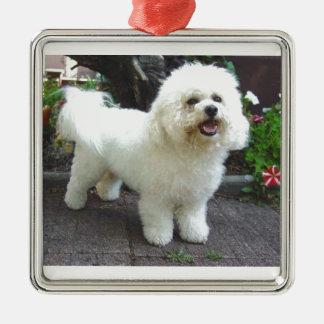 Bichon Frisé Dog Silver-Colored Square Ornament